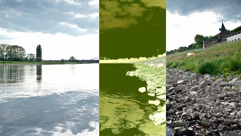 PIC20-DD-RND-9459.jpg